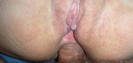 Contos de sexo grátis – Comendo cuzinho da esposa gostosa